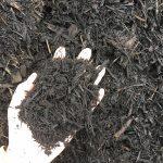 Mulch - Black
