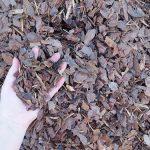 Mulch - Pine Mini Nuggets